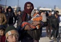 Германия выделит на помощь Алеппо 30 млн евро