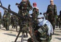 """США официально признали сомалийскую """"Аш-Шабаб"""" частью """"Аль-Каиды"""""""