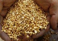 Всемирный совет по золоту предложил шариатский стандарт