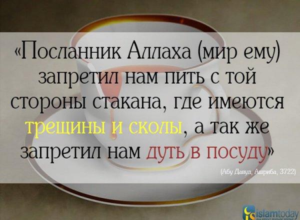 Почему Пророк (мир ему) запретил пить из разбитой посуды?