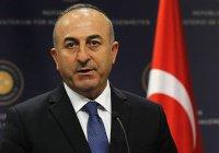 В Турции назвали ситуацию с исламофобией в Европе очень тревожной
