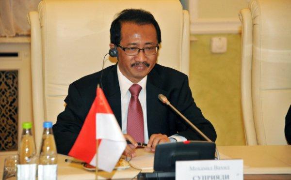 Посол Индонезии приехал вКазань насвадьбу сограждан