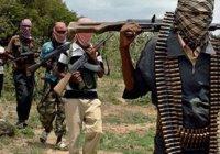 """600 человек освобождены из плена """"Боко Харам"""""""