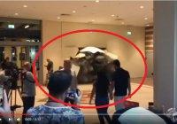 Эффектные кадры: танк проломил стену в знаменитом Дубай молле