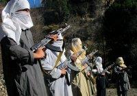 ООН: Талибан укрепляет позиции в Афганистане