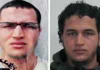 100 тысяч евро обещано за информацию о берлинском террористе