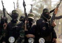 МВД: за ИГИЛ воюют более 2000 граждан Саудовской Аравии