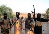 СМИ: боевики ИГИЛ получали в Дании пособия