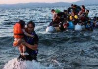 В Германии предложили выслать всех беженцев в Африку