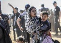 США готовятся принять беженцев из Ирака