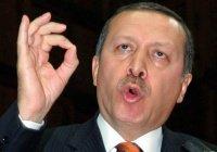 В Турции за критику Эрдогана задержали гражданку Канады