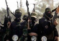 В Тунисе прошла акция против возвращения в страну боевиков ИГИЛ
