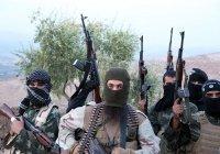 Боевики на Северном Кавказе переняли тактику ИГИЛ