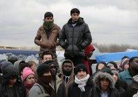 МВФ предложил Европе зарабатывать на беженцах