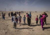 С начала штурма Мосул покинули 135 тысяч человек