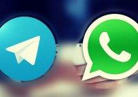 Минэкологии РТ начало принимать жалобы через WhatsApp и Telegram