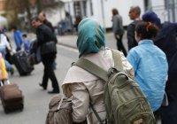 Число желающих получить статус беженца в Германии сократилось в 3 раза