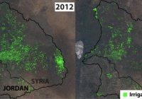 Экологи бьют тревогу из-за экологического ущерба от сирийской войны