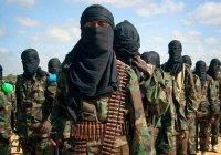 СМИ подсчитали, сколько человек боевики ИГИЛ казнили в 2016 году