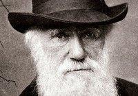 В Турции отказались от теории Дарвина