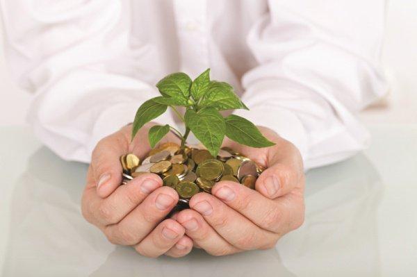 30 млн рублей будут направлены из бюджета РТ на поддержку малого и среднего бизнеса