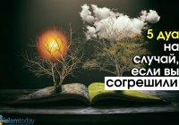 5 дуа, которые следует читать, если вы совершили грех