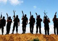 Франция подсчитала количество своих граждан в ИГИЛ