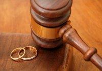 Инициативу Госсовета РТ об увеличении срока развода не поддержали в Госдуме