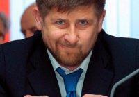 Мошенники вымогали у бизнесмена деньги голосом Рамзана Кадырова (Видео)