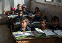ЮНИСЕФ: школы Турции посещают полмиллиона детей из Сирии