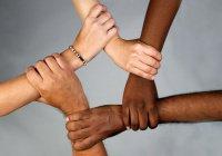 В Давосе представили проект против расизма и дискриминации