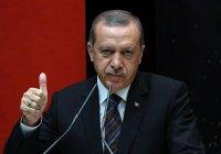Эрдоган назвал число арестованных по делу о попытке госпереворота