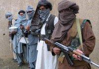 За 10 месяцев  «Талибан» совершил более 19 тысяч терактов