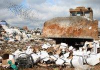 Правительство РФ профинансирует экологические проекты в Татарстане