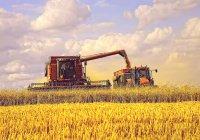 Татарстану выделят 433 млн на модернизацию сельхозпроизводства