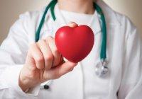 За безопасность сердца жителей ОАЭ будет отвечать мобильное приложение