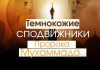 5 темнокожих сподвижников Пророка Мухаммада (ﷺ)