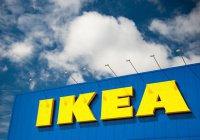IKEA примет на работу 200 сирийских беженцев