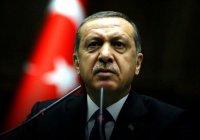 СМИ: Эрдогану удалось спастись благодаря катарскому спецназу