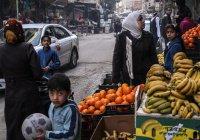 Сирия будет поставлять в Россию фрукты и овощи