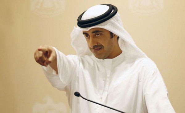 Руководитель МИД ОАЭ прокомментировал миграционный указ Трампа