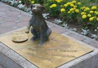 В Н.Челнах поставят копилку в виде скульптур кошки и собаки