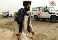 Красный Крест свернул работу в Афганистане