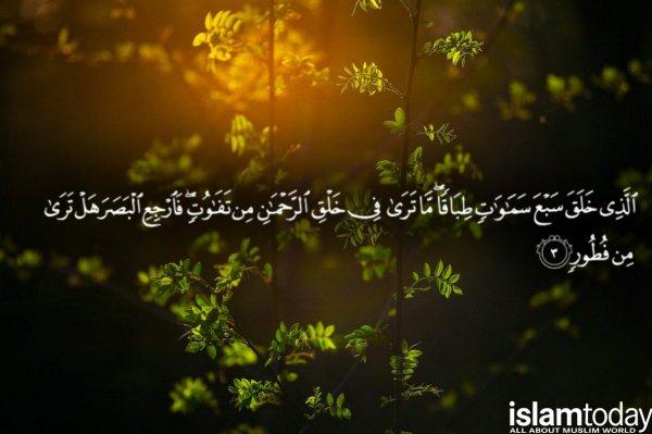 Аяты этой суры будут заступаться за человека, пока ему не простятся его грехи