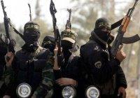 ИГИЛ угрожает убийством известным мусульманским проповедникам