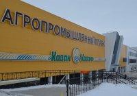 В Казани появится розничная сеть Агропромпарка