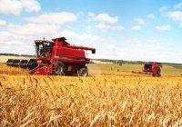 В Татарстане вырос объем валового продукта АПК
