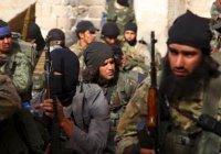 СМИ: ИГИЛ получает медицинскую помощь из США