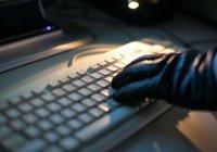 Спецслужбы СНГ научат выявлять вербовщиков ИГИЛ в интернете