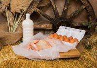 В РТ начнут внедрять интернет-торговлю фермерскими товарами